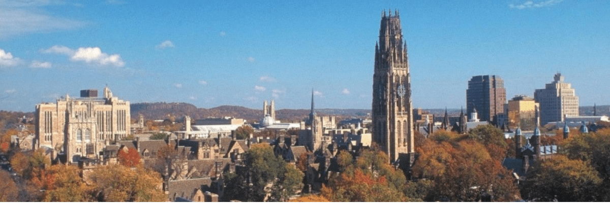 What's the Campus Vibe? 4 College Experiences to Gauge Before Studying Abroad